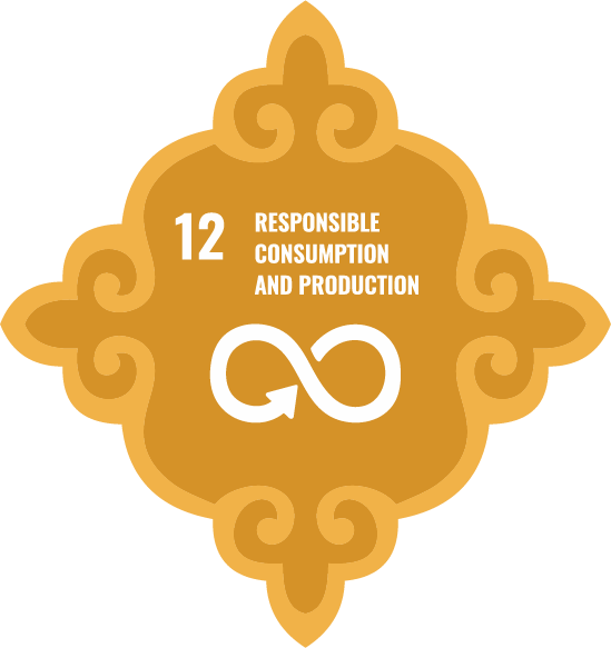 Responsible consumption and production - Goal 12